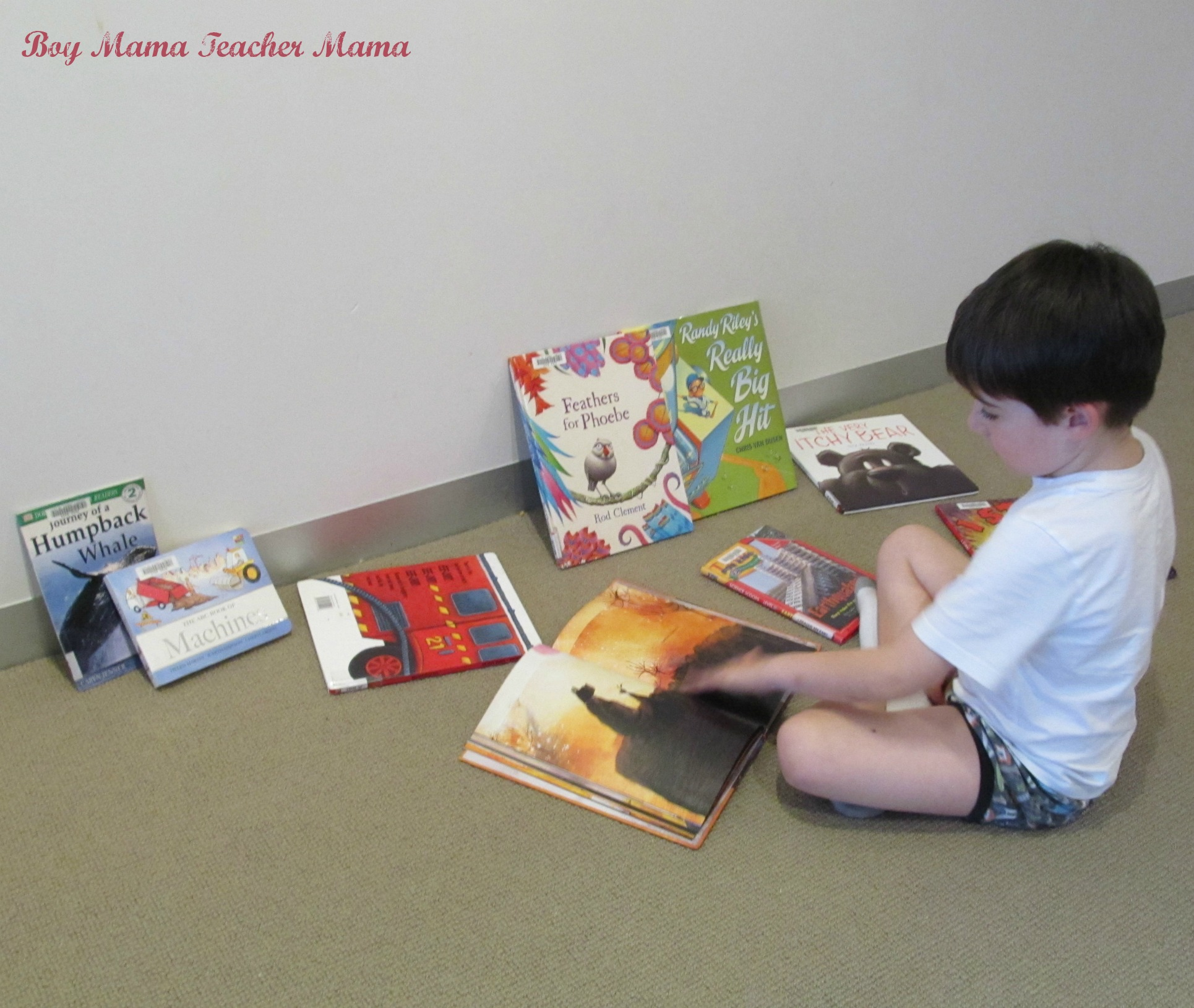 Boy Mama Teacher Mama: Library Book Love