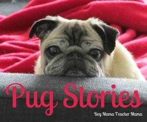 BMTM- Pug Stories