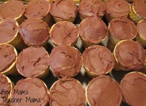 Boy Mama Teacher Mama | Garden Cupcakes