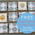 Boy Mama Teacher Mama  FREE Paw Patrol Printable Cards (featured)