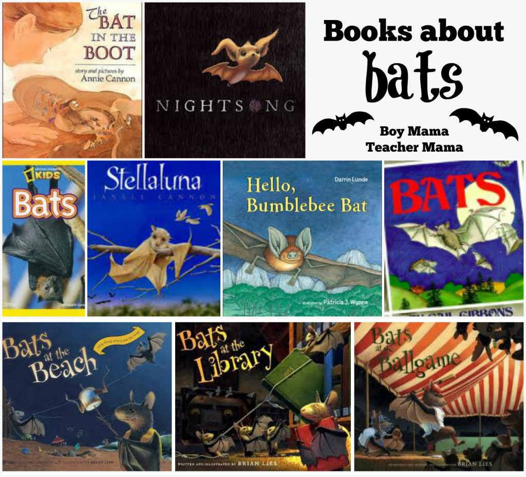 Boy Mama Teacher Mama Books about Bats