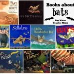 Boy Mama Teacher Mama  Books about Bats
