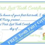 Boy Mama Teacher Mama  FREE Tooth Fairy Certificate (featured)