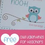 Boy Mama Teacher Mama  FREE Printable Owl Valentines