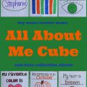 Teacher Mama: All About Me Cube (and data collection papers)