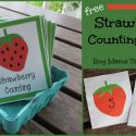 Teacher Mama: FREE Strawberry Counting Cards