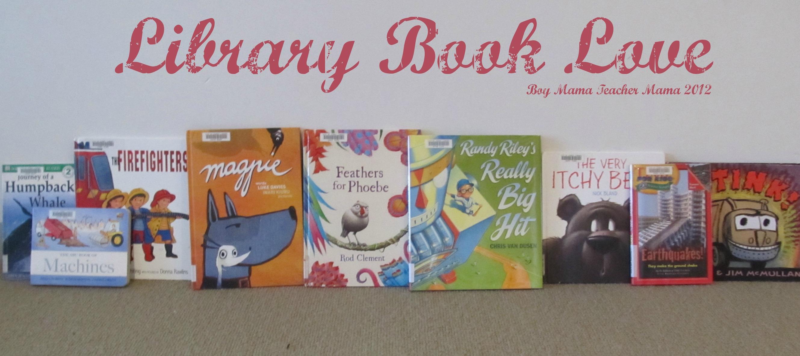 Boy Mama Teacher Mama: Library Book Love