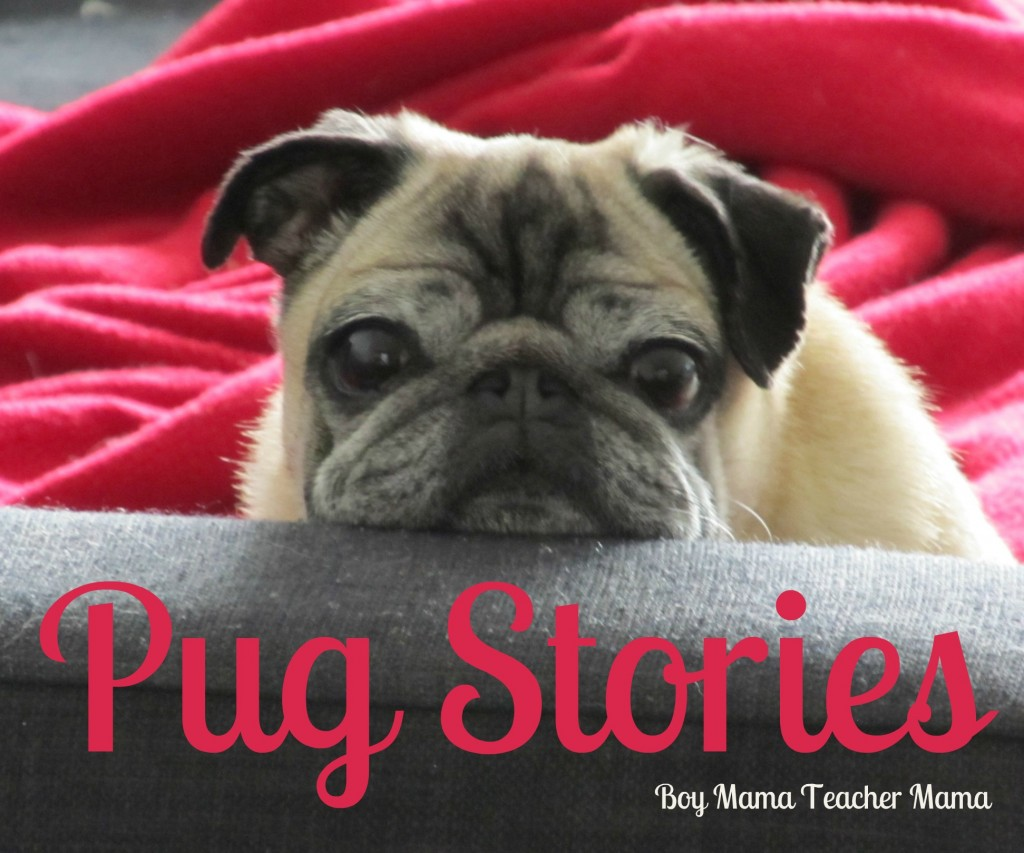 Boy Mama Teacher Mama | Books about Pugs