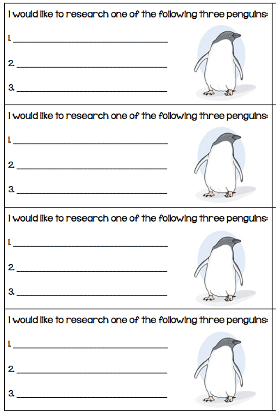 how tall is a penguin: choices
