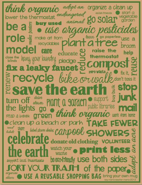 Boy Mama Teacher Mama Save the Earth Poster 2013