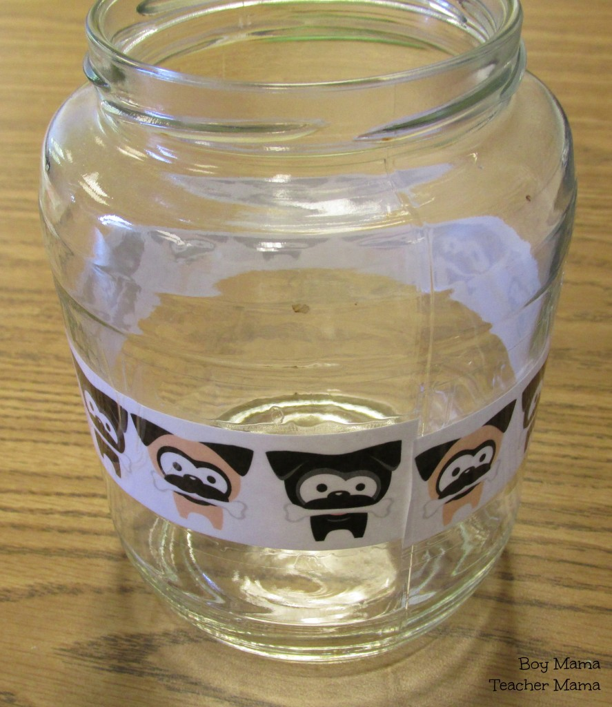 jar with pugs