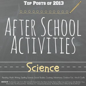 http://www.whatdowedoallday.com/2013/12/top-science-activities-for-after-school.html
