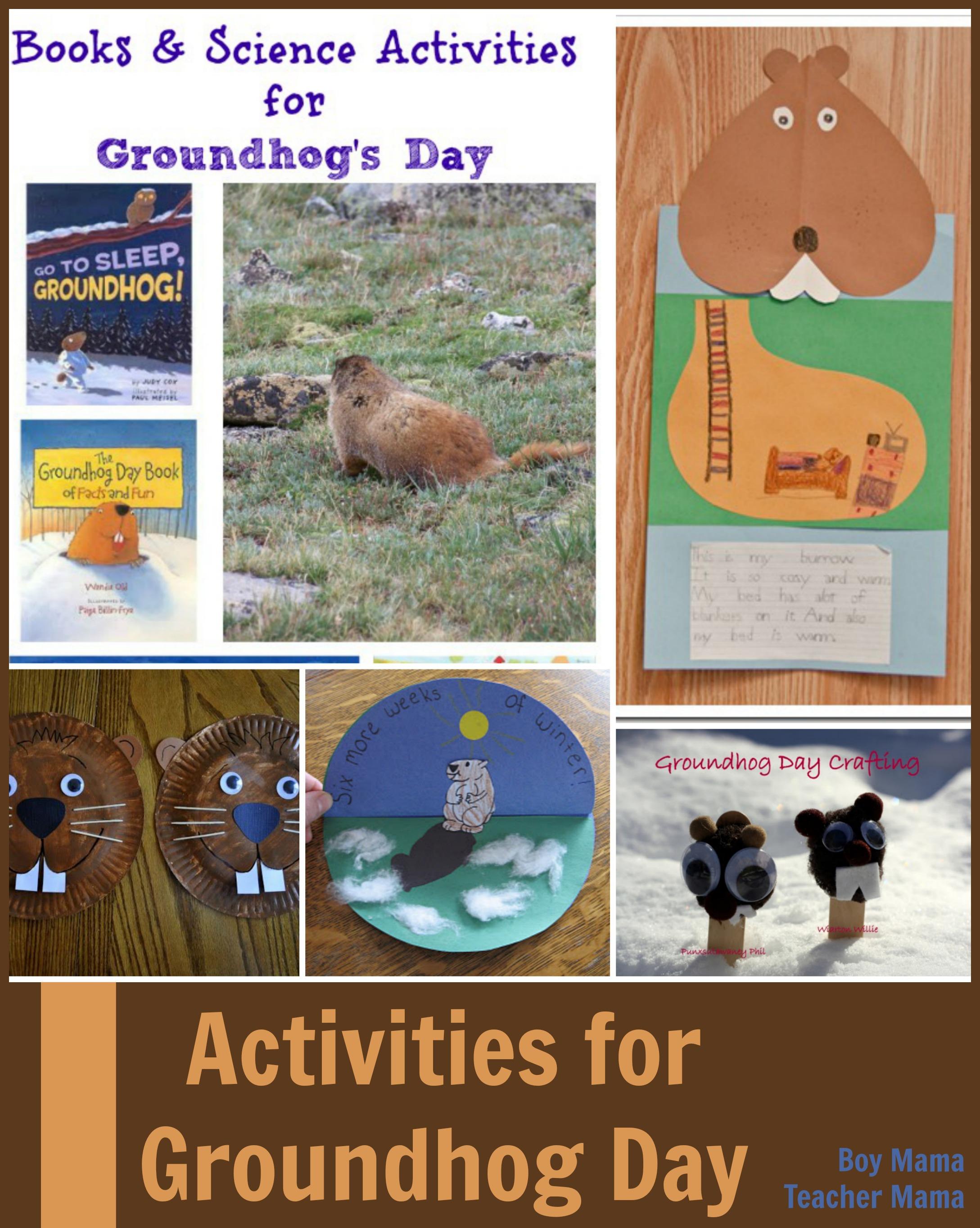 Boy Mama Teacher Mama Groundhog Day