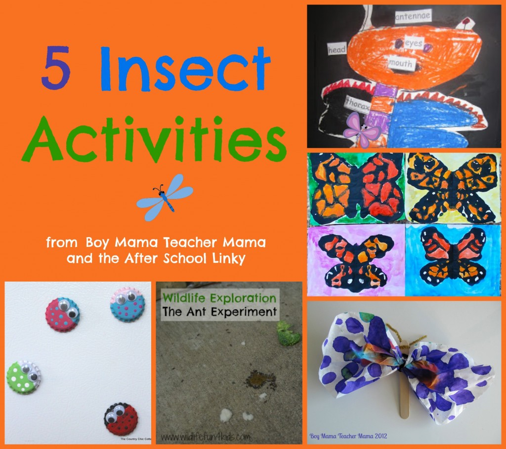 Boy Mama Teacher Mama  5 Insect Activities.jpg