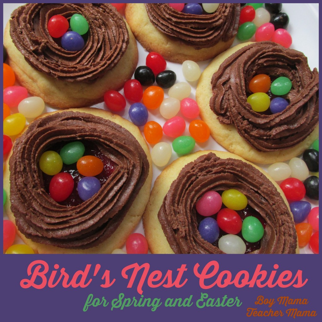 Boy Mama Teacher Mama  Bird's Nest Cookies.jpg