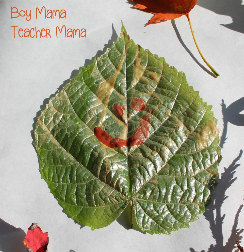 Boy Mama Teacher Mama  Fall Leaves 5