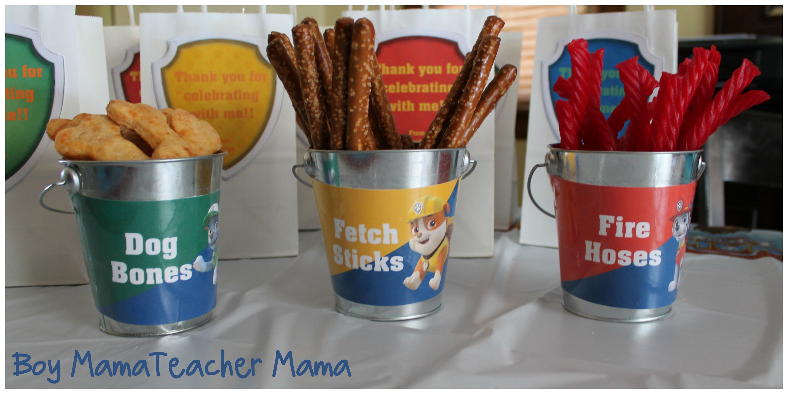 Boy Mama Teacher Paw Patrol Party 6
