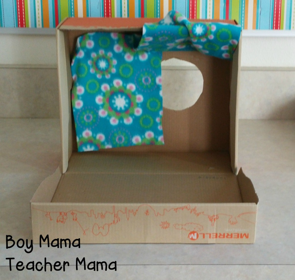 Boy Mama Teacher Mama Touchy Feely Box 2