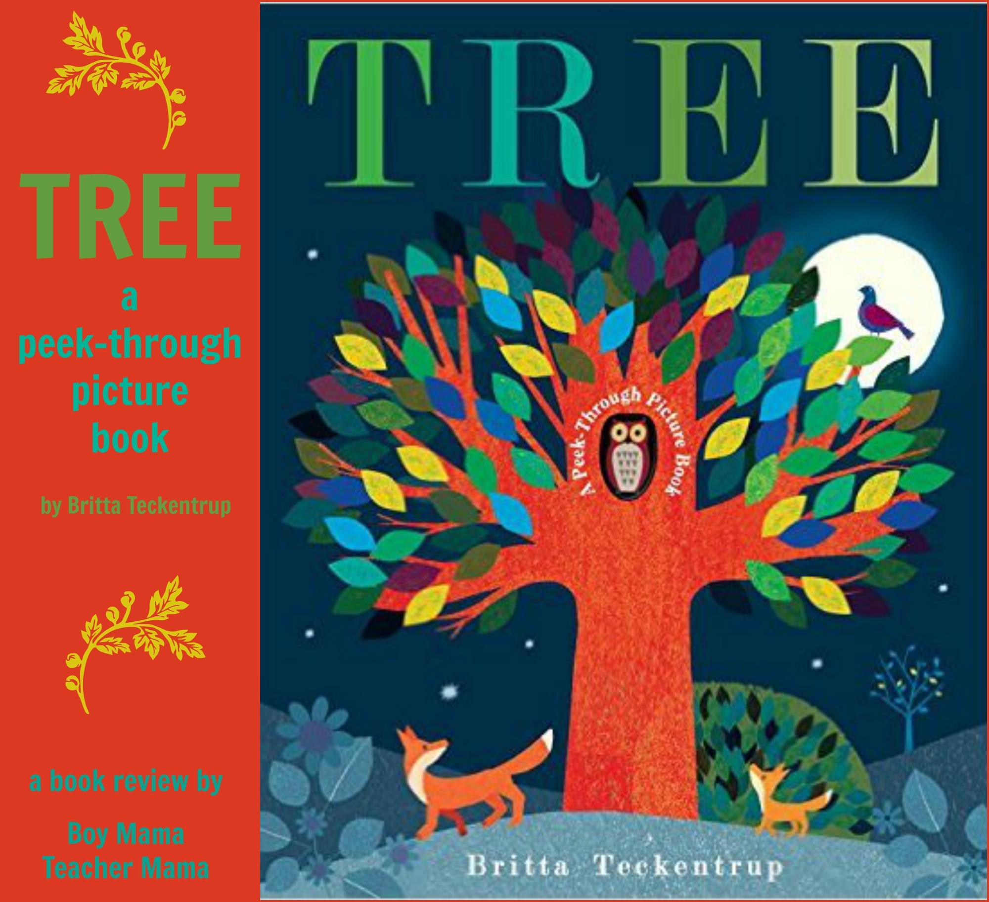 Boy Mama Teacher Mama Tree